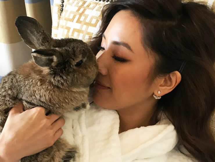 Constance Wu's bunny Lida Rose